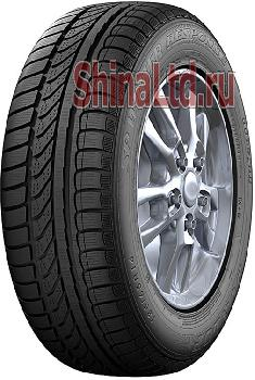 Шины Dunlop SP Winter Response
